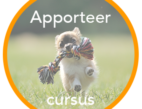 Apporteercursus