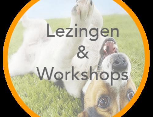 Lezingen & Workshops