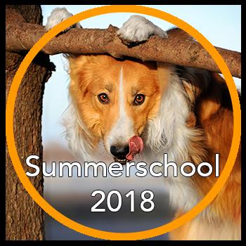 Summerschool 2018